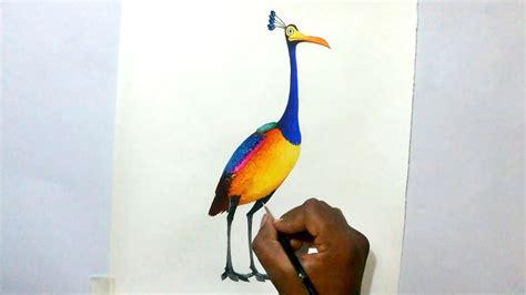 film up bird kevin up drawing www pixshark com images galleries