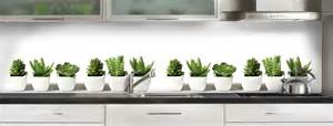 Charmant Credence Cuisine Adhesive #5: cactus.jpg