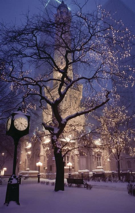 pretty lights tree snow nature pinterest church