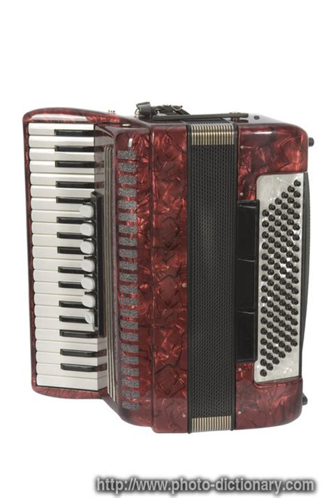 accordion photopicture definition  photo dictionary