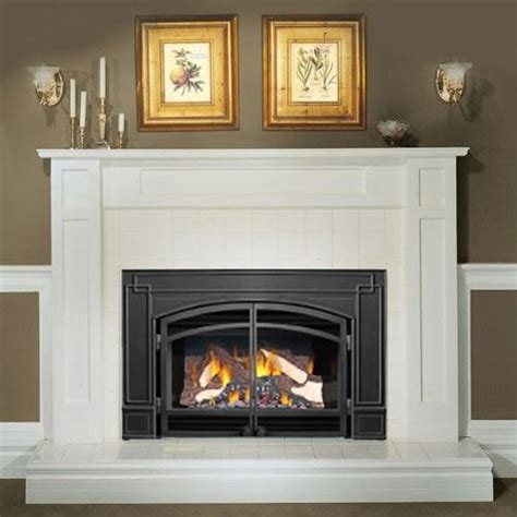 Gas Fireplace Doors by Napoleon Gi3600 Gas Fireplace Insert With Arched