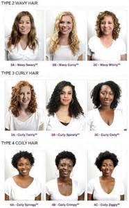 what type of hair do you use for crochet braids 25 best curly hair types trending ideas on pinterest