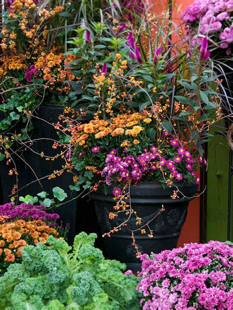 Fall Flower Gardening 10 Incredibly Inspiring Fall Flower Gardens 187 Curbly Diy Design Decor