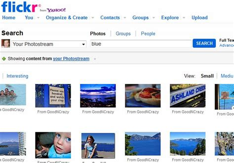 Flickr Search Search Flickr Comments Image Search Results