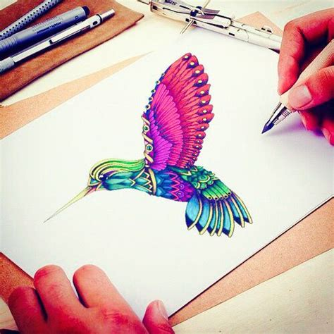 color drawings bird colibri color draw drawing free dtaw