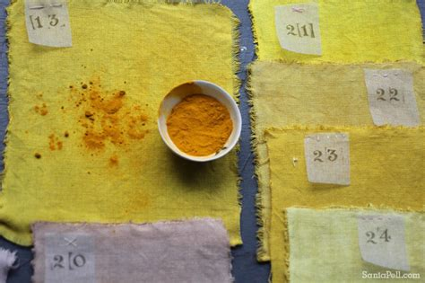 colour  food homemade fabric dyes sania pell