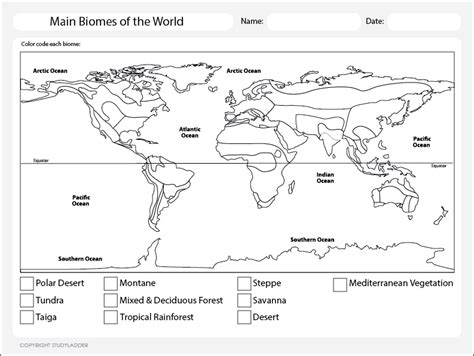 Biomes Of The World Worksheet by World Map Biomes Science Skills Interactive