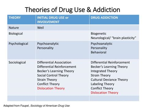 Authorized Opiate Detox Medications by Ppt Theories Of Use Addiction Powerpoint