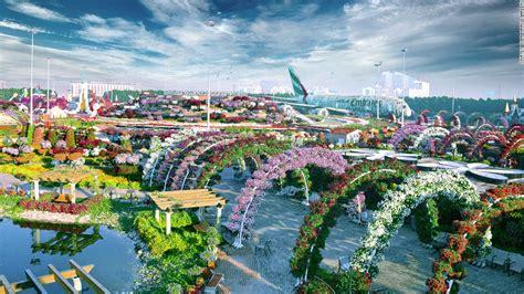world largest flower garden dubai miracle garden world s largest flower garden cnn