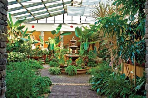 Garden Of Atrium Discovering The Of Living Well At The Garden Atriums
