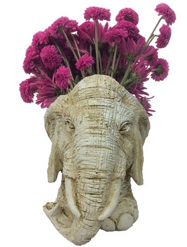 Planters Mascot by Elephant Mascot Planter Antique Finish Only 54 95 At