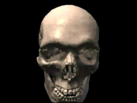 imagenes de calaveras en 3d craneo en 3d youtube