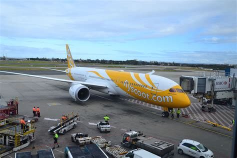 airasia vs scoot scoot may launch budget flights to honolulu by year end