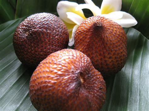 Benihbijibibit Buah Salak Merah manfaat buah salak manfaat buah segar