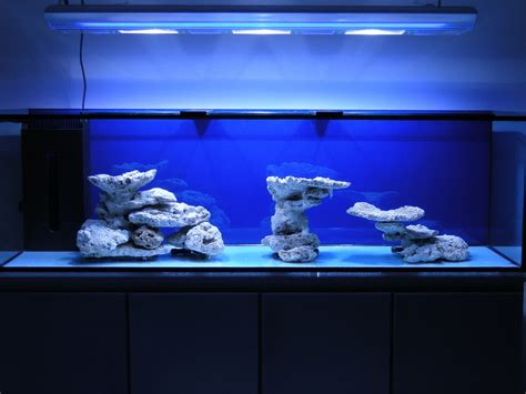 marine tank aquascaping minimalist aquascaping reef central online community