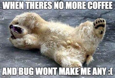 Oh Nooo Meme - oh nooo polar bear imgflip
