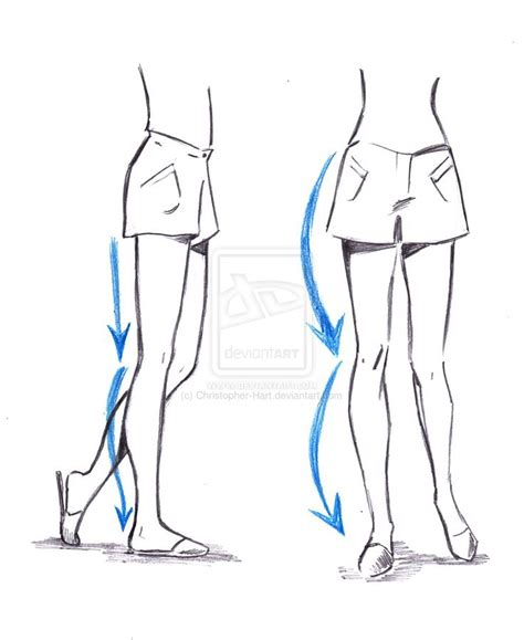 Drawing Legs by Tutorial On Drawing The Legs Anatomy Reference