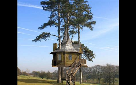 amazing tree house wallpapers i love tree house real tree house wallpaper 1680x1050