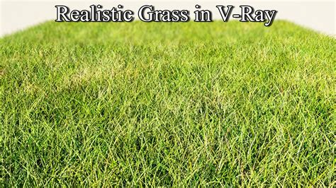 ds max vray tutorial realistic grass  vray tutorial