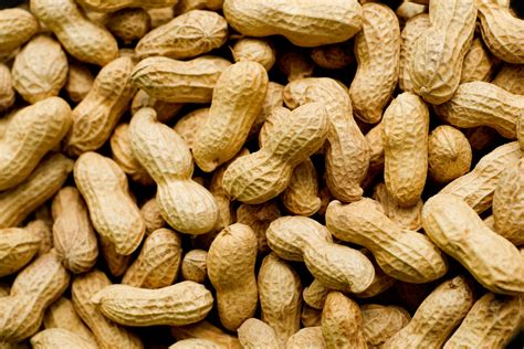peanuts pictures 5 foods for better vision huffpost