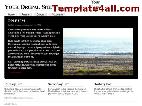 drupal themes orange free clean gray business drupal orange template