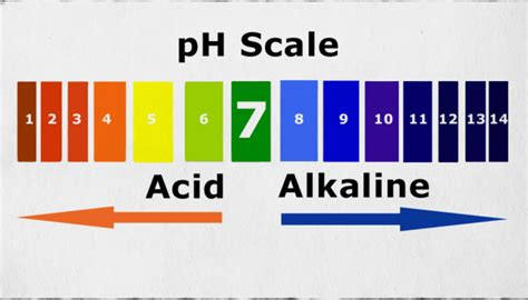 ph chart the power of ph on target living
