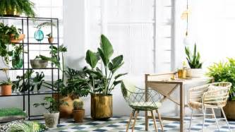 10 indoor plants that are so easy to take care of 99 great ideas to display houseplants indoor plants