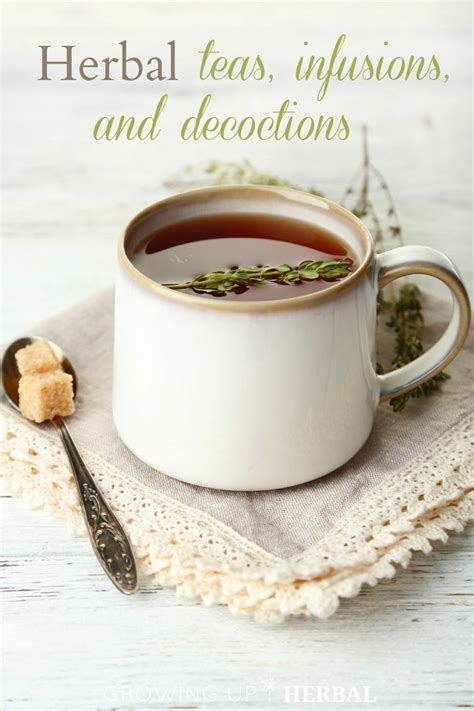 8 Tea Infusions You To Try by A Guide To Herbal Teas Infusions And Decoctions Great