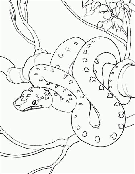 Snake Coloring Pages Coloring Pages To Print Coloring Pages Snake