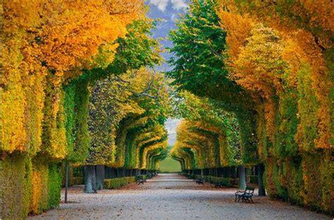 imagenes 3d bosques imagenes bosques 3d imagui