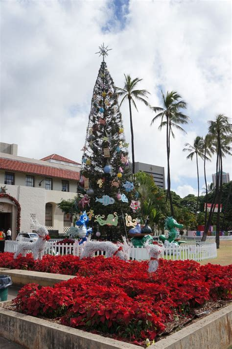 top 15 ideas about christmas in hawaii on pinterest hard