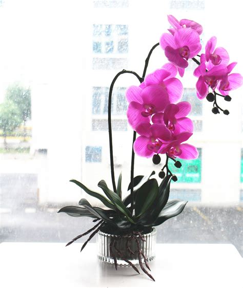 Rattan Vase Popular Orchid Vases Buy Cheap Orchid Vases Lots From
