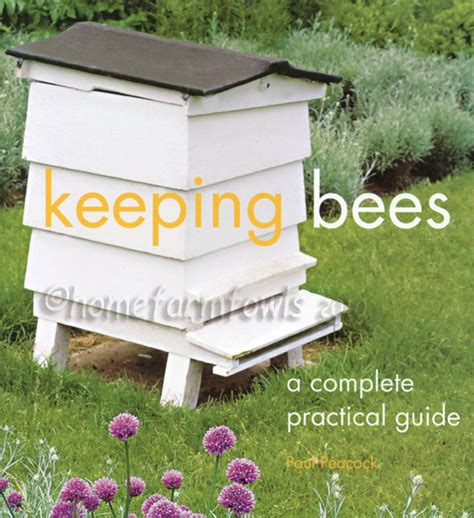 keep bees away from house keep bees away from house 28 images rincon vitova insectaries keep carpenter bees