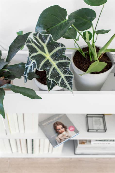 ikea plantenbak ikea hack billy boekenkast en plantenbak in 233 233 n tanja