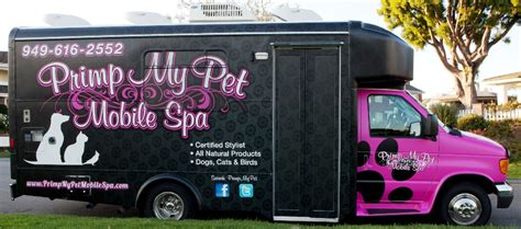 mobile groomer primp my pet mobile spa gilbert arizona mobile grooming