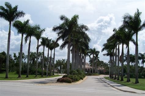 pembroke pines fl photo gallery colleges in pembroke pines fl keiser university