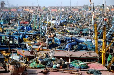 fishing boat price in chennai as a community s trawlers are sent to port its bustling