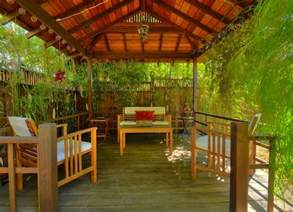 bamboo for privacy backyard privacy ideas 11 ways to