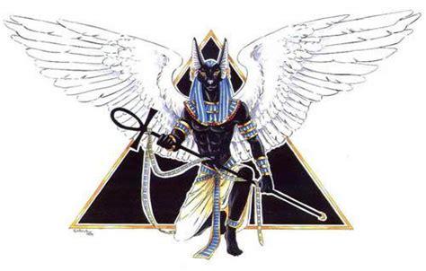 anubis le chacal ou le chien sauvage en egypte blog de