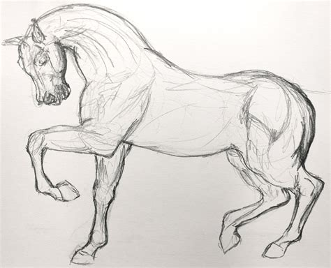 Sketches Horses by Simple Sketches