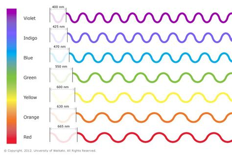 wavelengths of colors the visible spectrum showing the wavelengths of each of