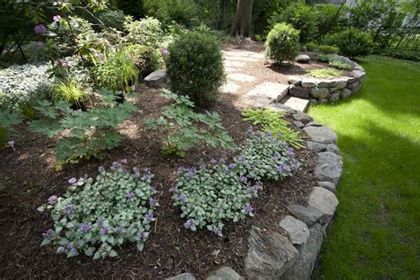 the best plants for landscaping in the nj tri state area thomas flint landscape