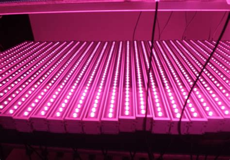 how to use grow lights it s about led grow lights led lighting icanxplore