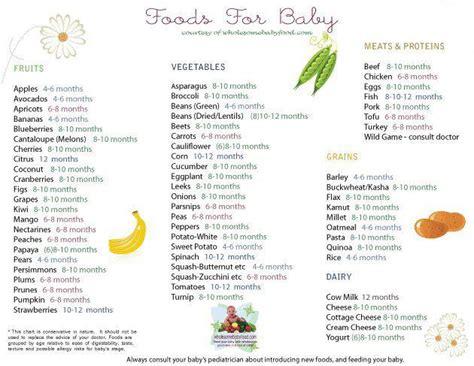 film untuk anak 6 bulan makanan pertama bayi 6 bulan solid food yanmieonline com