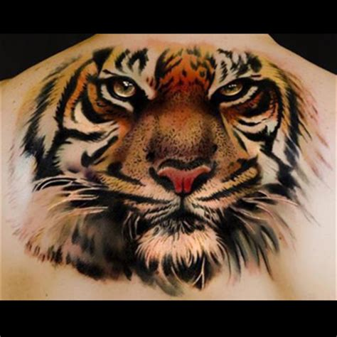Tiger Tattoo Meanings Itattoodesigns Com Meaning Of A Tiger Tattoos