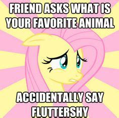 my little brony meme my little pony memes cheezburger image memes at relatably com