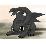 Drawings Of Dragons On Pinterest  Dragon