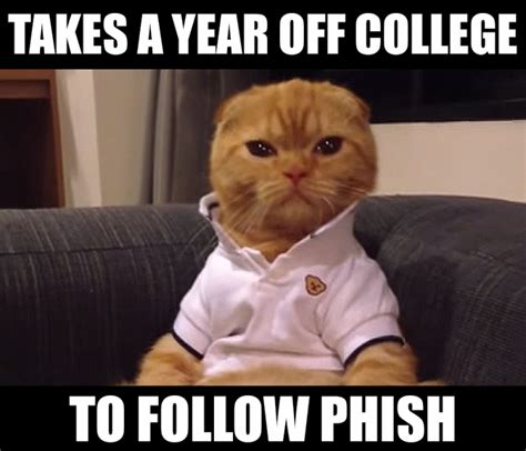 the 10 best preppy cat memes cats vs cancer