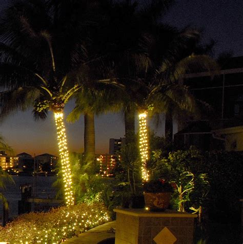 Inspiring Landscape Tree Lighting 10 Palm Tree String Stringing Lights In Trees