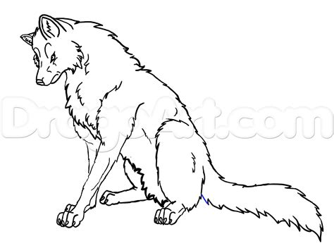 how to draw a wolf dragon art archives pencil drawing